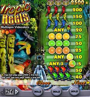 Tropic Reels Slot Machine Online ᐈ Playtech™ Casino Slots